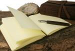 <b>Zettelwirtschaft ade – die schönsten Notizbücher</b>